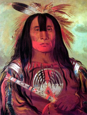 George Catlin - Buffalo Bullu0027s Back Fat Head Chief Blood Tribe  sc 1 th 258 & George Catlin - The Complete Works - georgecatlin.org 25forcollege.com