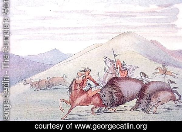 George Catlin - Buffalo bull protecting calf and mother under attack