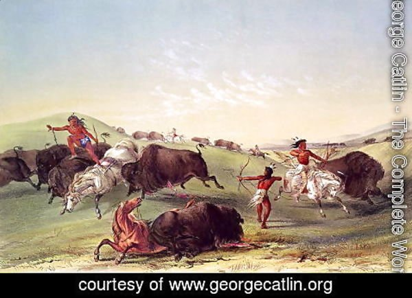 George Catlin - Buffalo Hunt, plate 7 from Catlin's North American Indian Collection