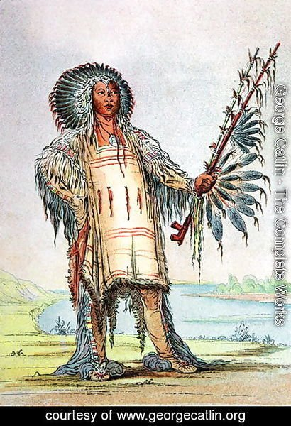 Mandan Indian Ha-Na-Tah-Muah, Wolf chief