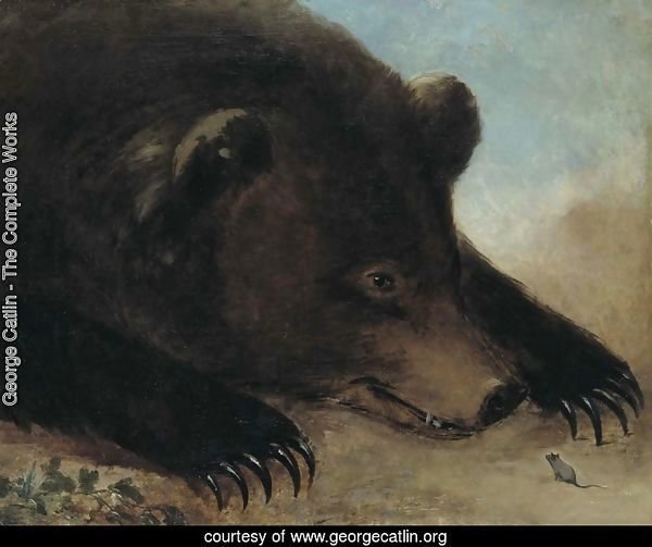 Portraits of Grizzly Bear and Mouse