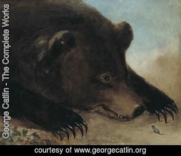 George Catlin - Portraits of Grizzly Bear and Mouse