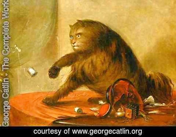 George Catlin - The cat of ostend