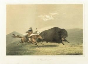 Buffalo Hunt, Chase And Antelope Shooting